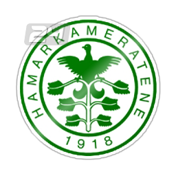 HamKam Youth